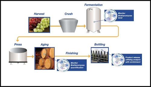 wine-quality-control-microbial-detection-gd-process